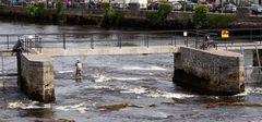 River Moy fishing