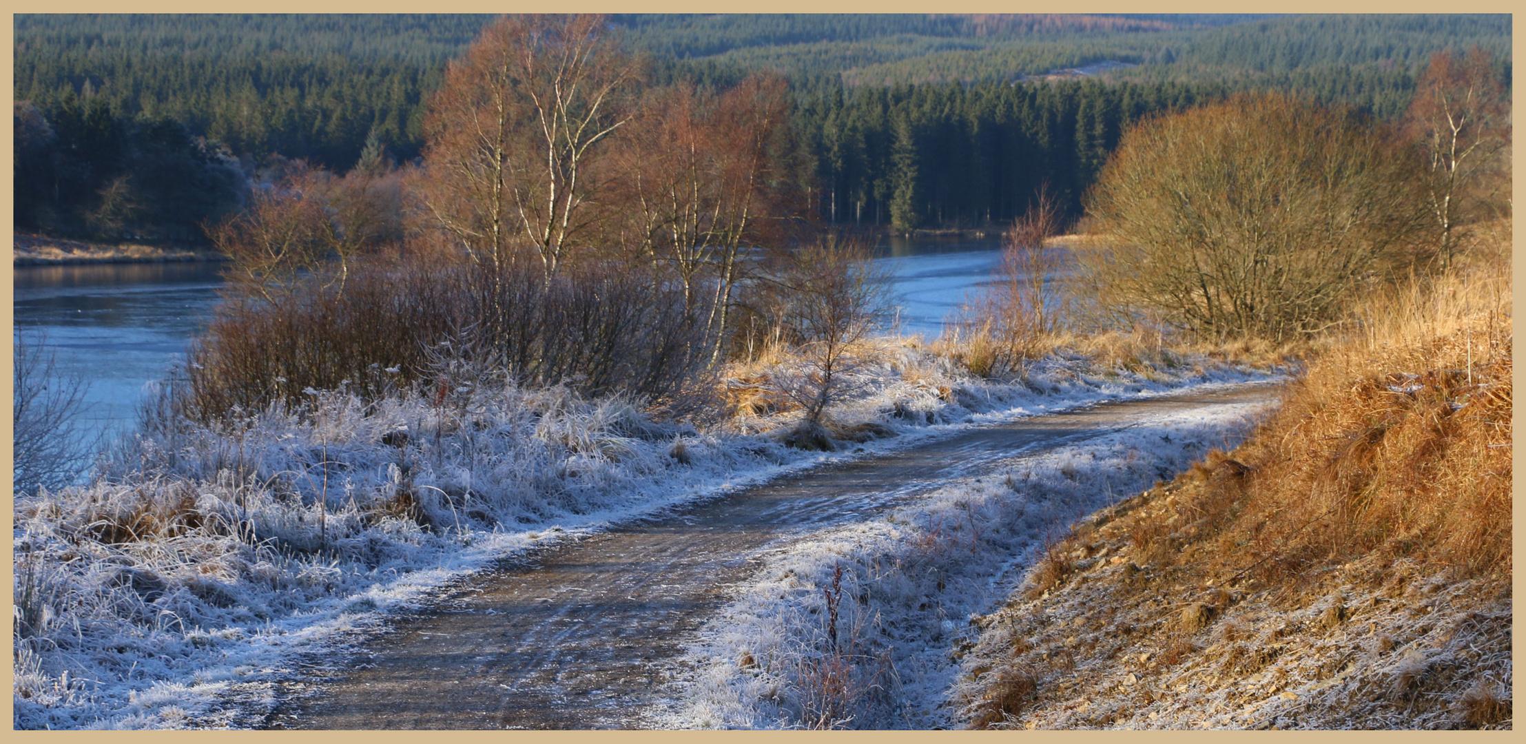 riverside path at kielder