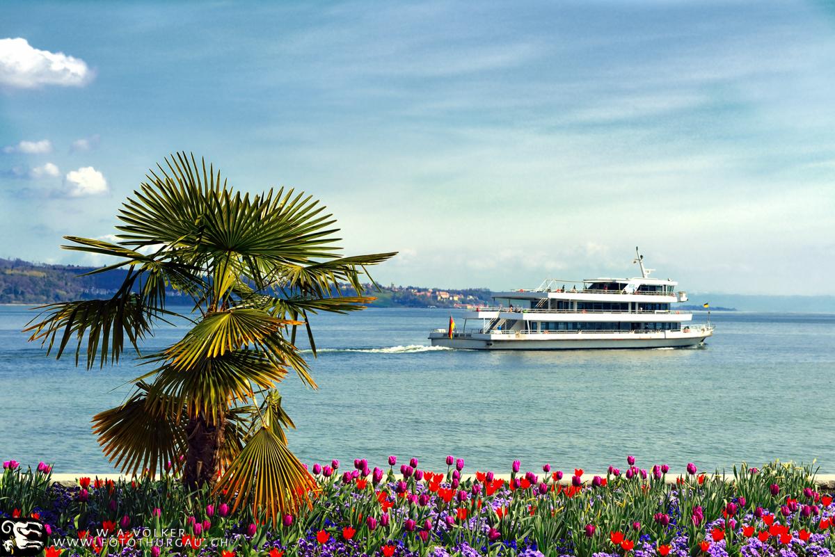 Riviera oder Bodensee