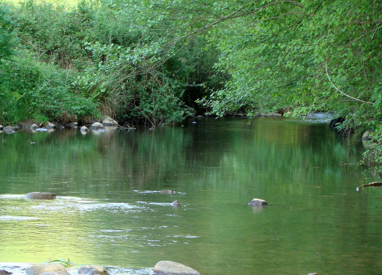 Rivière Béarnaise
