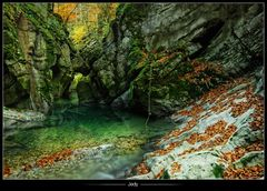 •Rivière d'automne•