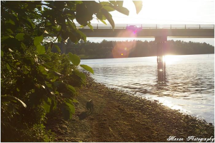 Rivière & Pont