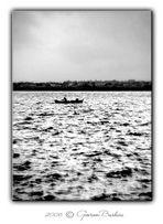 """""""..rivoglio l'acqua che sapevi tu, rivoglio il mare,..silenzio,luce e pesci volanti,sopra a volare."""""""