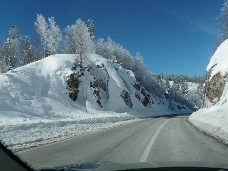 Road near Podgorica
