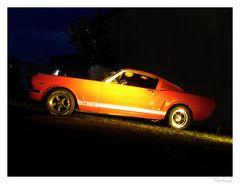 Roadrunner - Fords Mustang GT 350