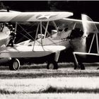 Roaring Radials and Sun-Glinting Props on a Summer Afternoon