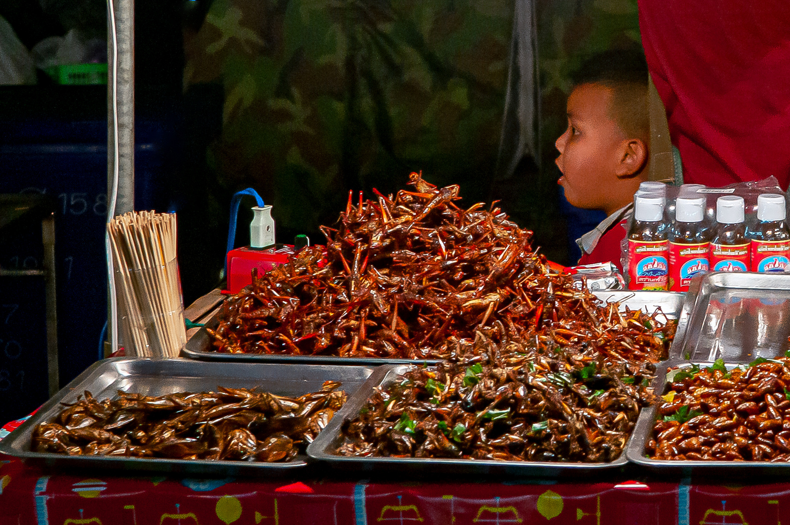 Roasted insects sold for dinner