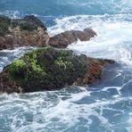 roca cubierta de verde