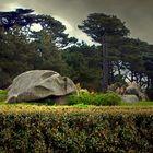 Rochers dans le parc d'une villa
