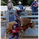 Rodeo (1)