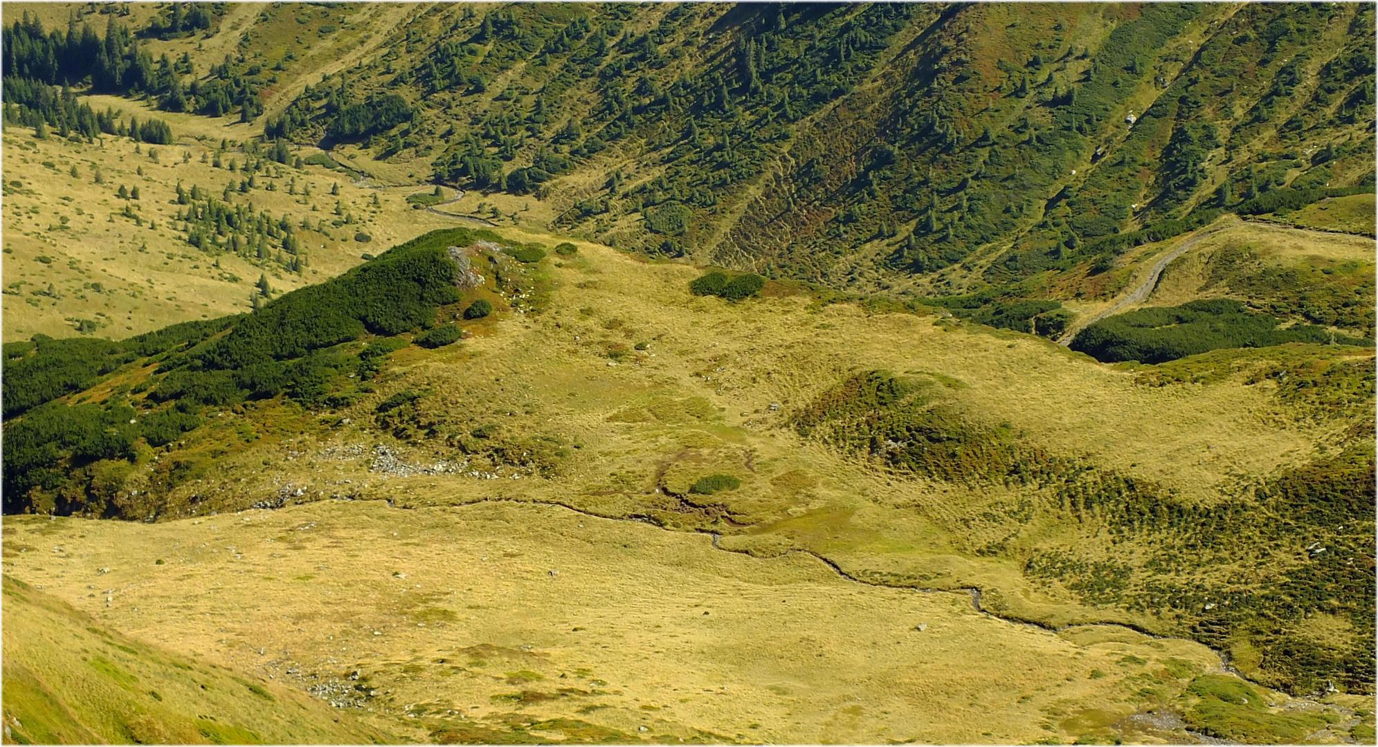 Rodnei Mountains.