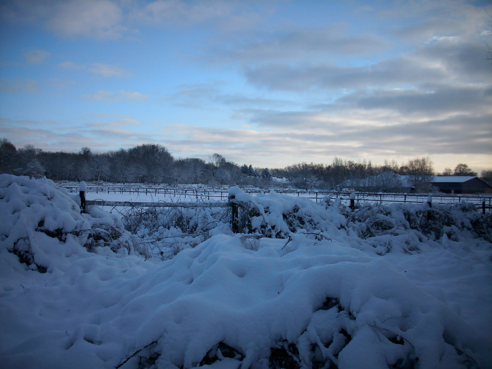 Röhlinghausen im Schnee 10