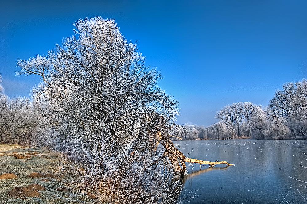 Röhmsee im Winter