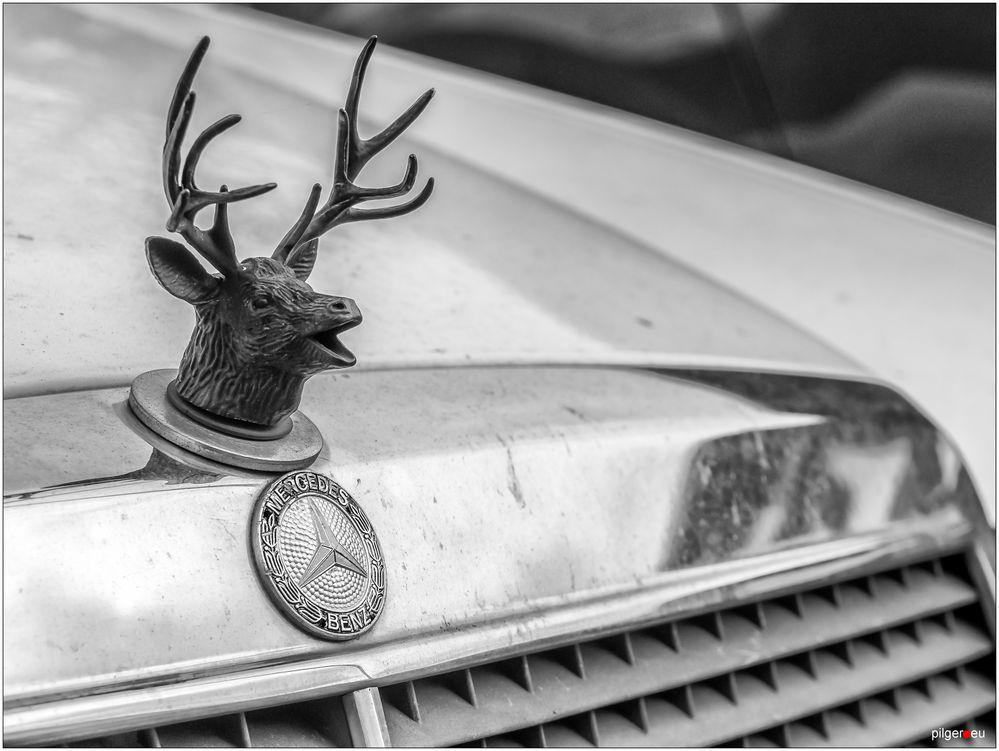 Röhrender Benz