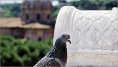 ... römischer Denkmalbeschmutzer ...