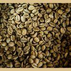 Rohkaffee