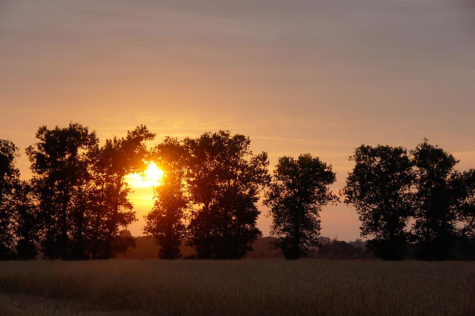 Rohrbeck, 02.08.10 – 05