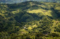 Rollende Hügel ~ Sumba Barat