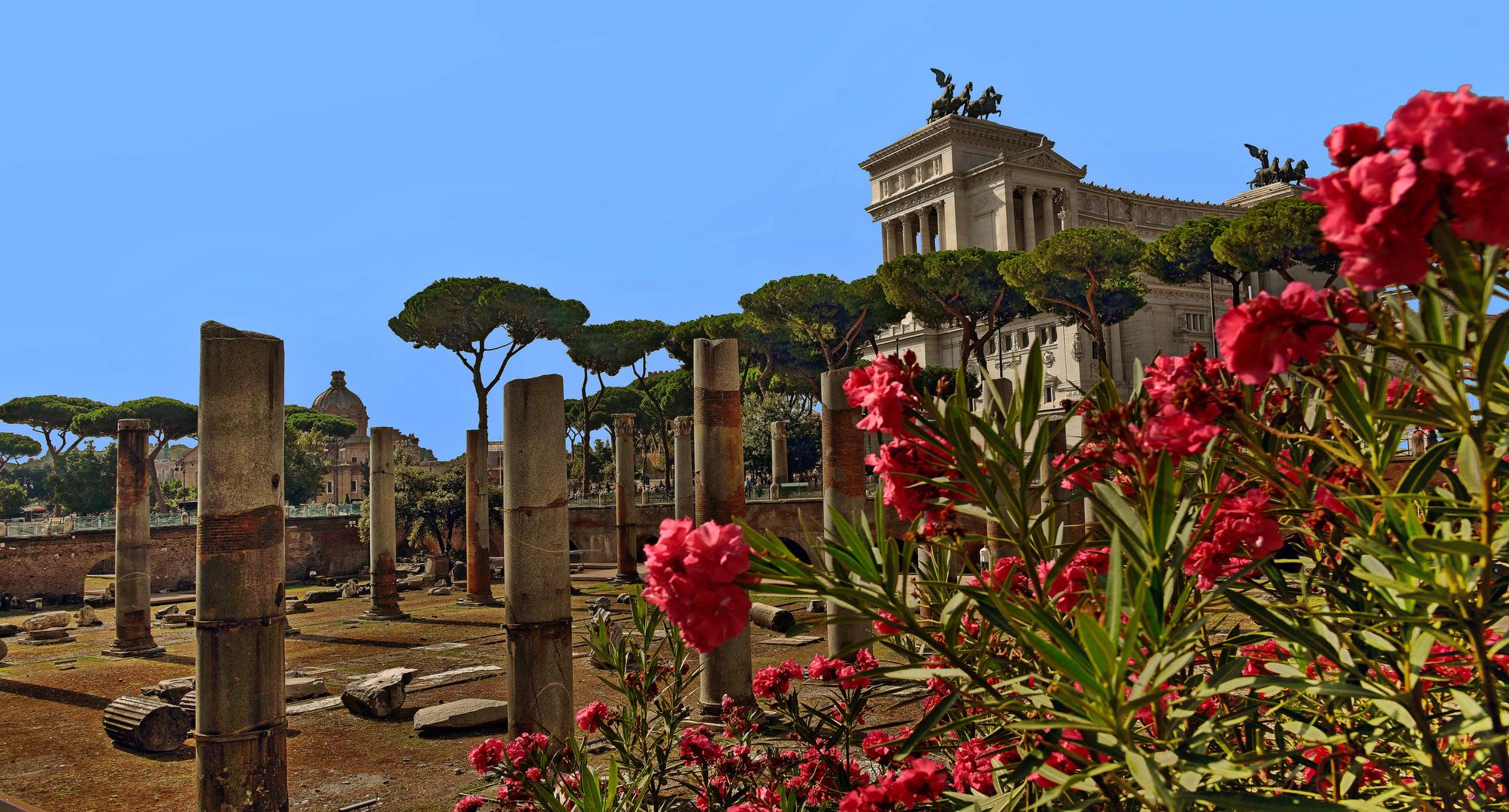 ROM  - Blick auf die Monumento Vittorio Emanuele II -
