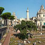 ROM - Forum Romanum -