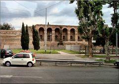 *Roma dal Bus*