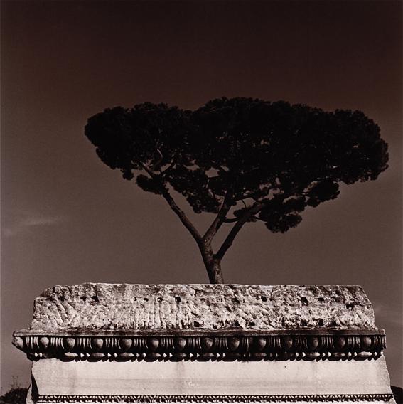 Roma fotografia di Augusto De Luca - 3