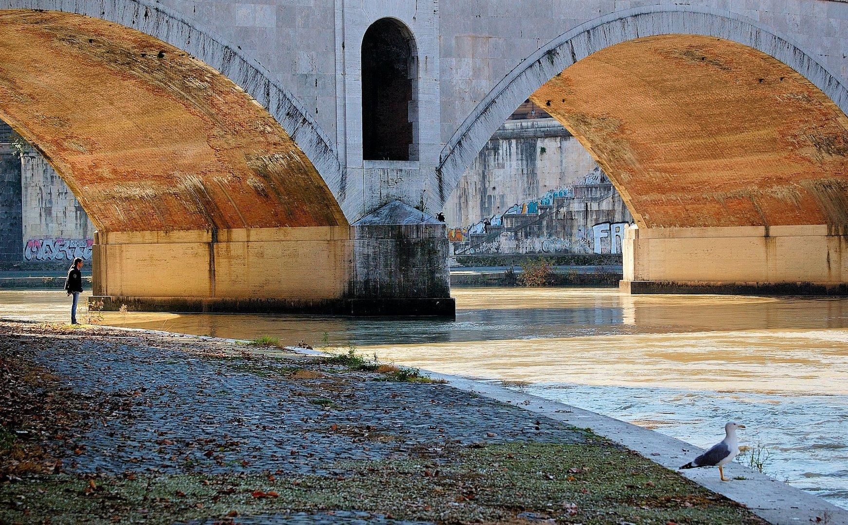 "Roma, una vita ai margini: ""Solitudine"""
