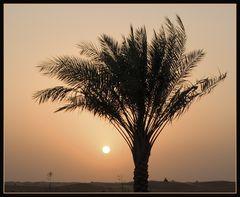 Romanticism@Dubai
