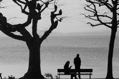 Romantik im Jahre 2008