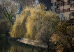 Romantischer Neckar