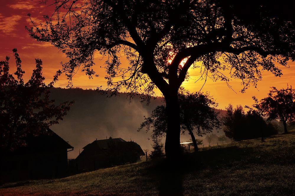 Romantischer Sonnenaufgang am Neckar 2 ....