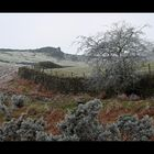 Rombalds Moor