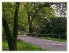 Rombergpark Dortmund