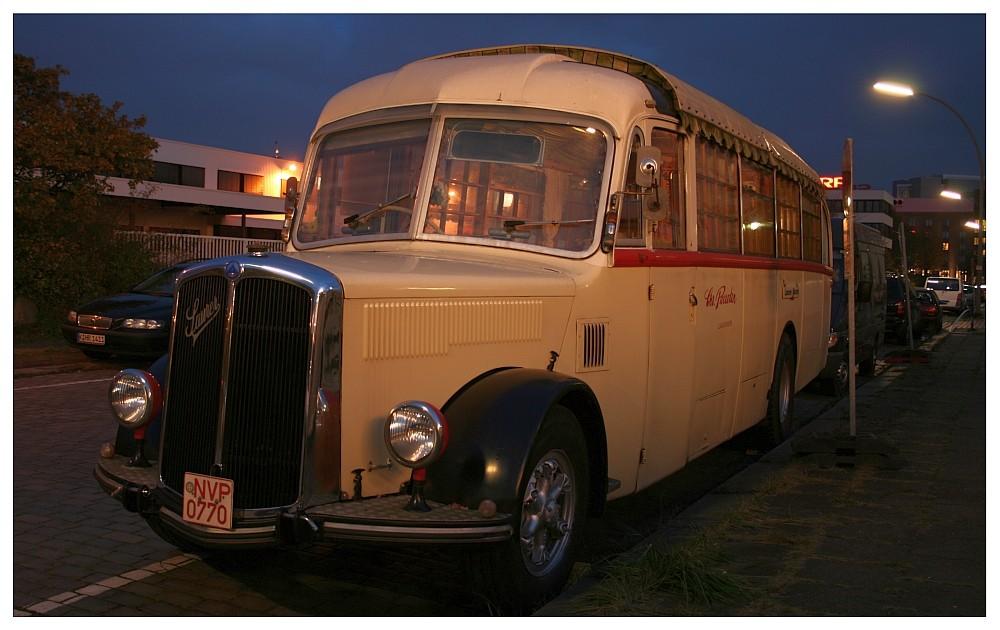 Roncalli Bus
