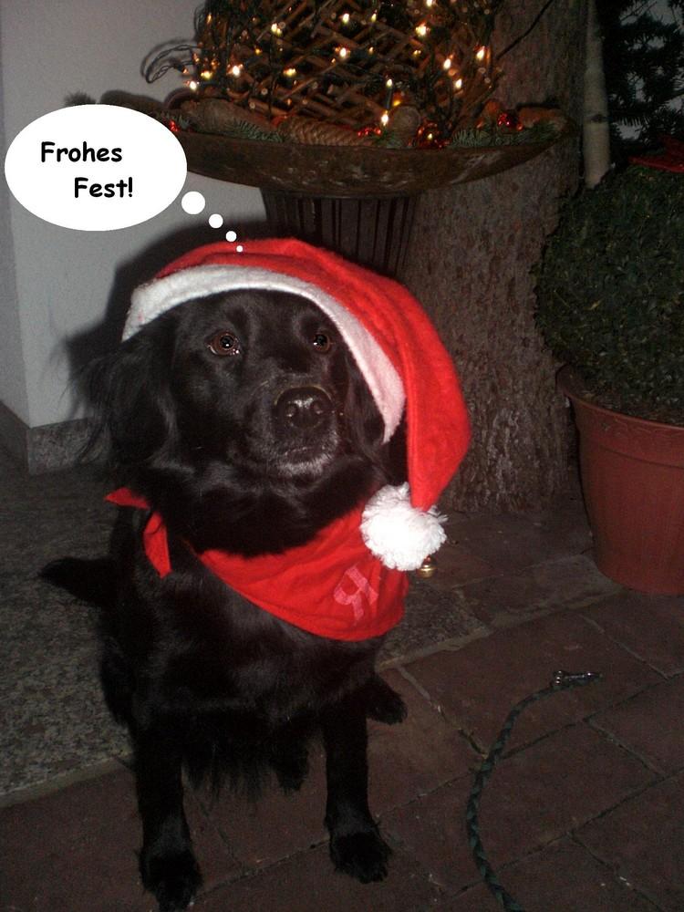 Ronja, der Weihnachtself
