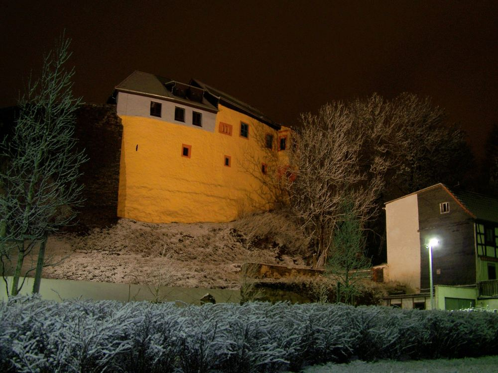 Ronneburger Burg BUGA 2007