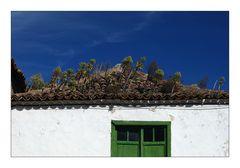 Roof Garden - Dachgarten