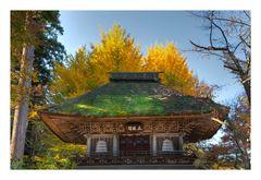 Roof & tree