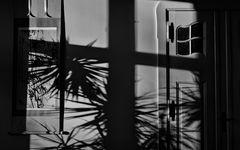 room.shades