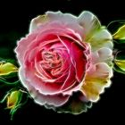 Rosa fraktalie Art