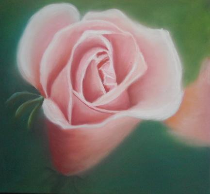 Rosa Rose nach Sandra Redlich