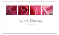 ~ Rosa Traum ~