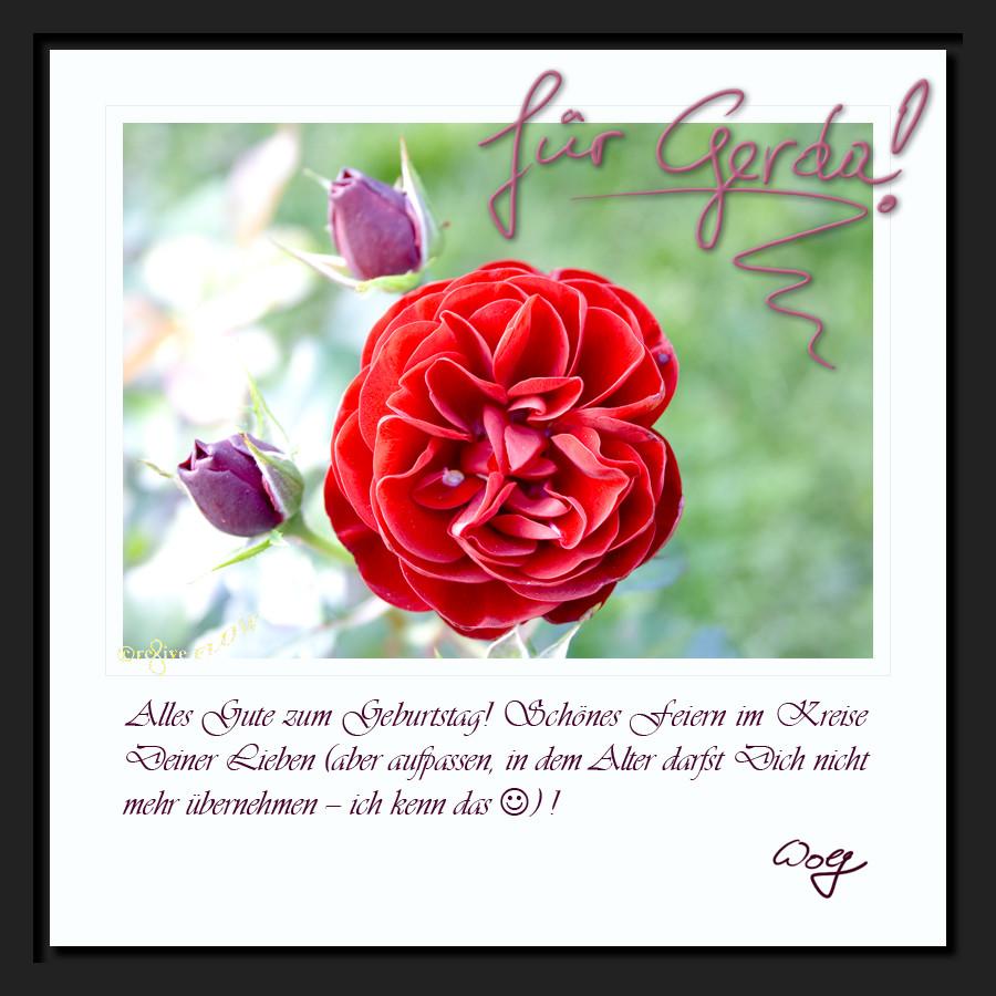 rose 4 Gerda