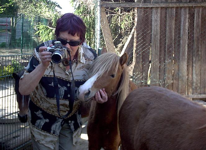Rose bringt Ross fotografieren bei...