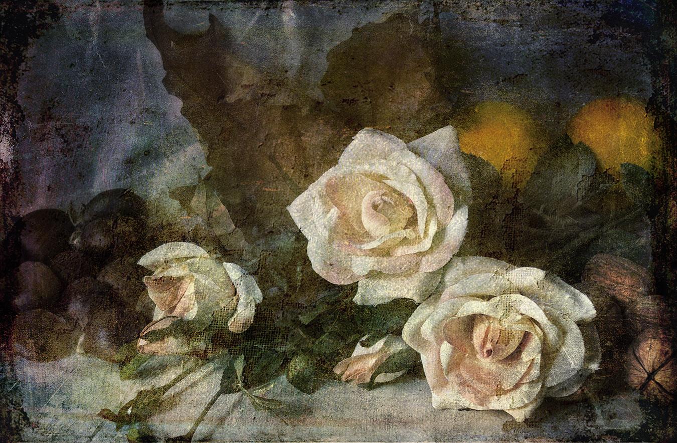 Rose e noci ...