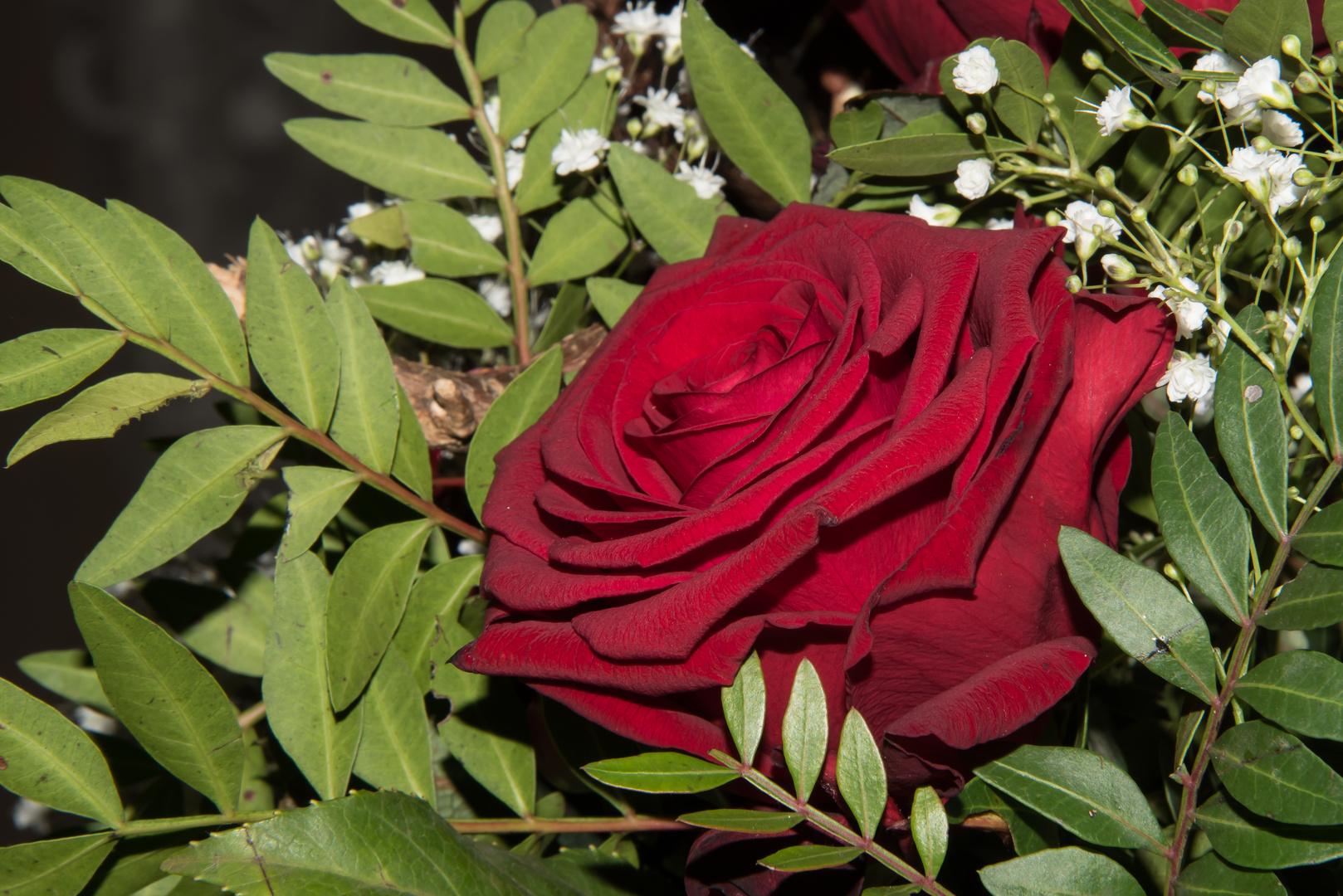 Rose in einem Blumengesteck