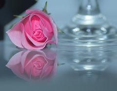 Rose mit Glas