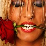 Rose Passion ...