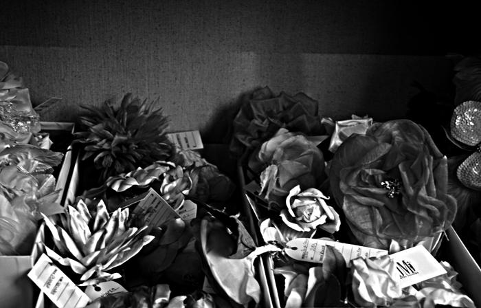 ....rose senza spine...