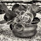 Rose sul tavolo